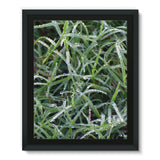 Early Morning Dew On Grass Framed Eco-Canvas 11X14 Wall Decor