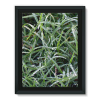 Early Morning Dew On Grass Framed Eco-Canvas 18X24 Wall Decor