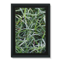 Early Morning Dew On Grass Framed Eco-Canvas 20X30 Wall Decor