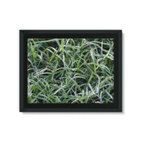 Early Morning Dew On Grass Framed Eco-Canvas 24X18 Wall Decor