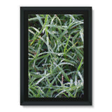 Early Morning Dew On Grass Framed Eco-Canvas 24X36 Wall Decor