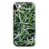 Early Morning Dew On Grass Phone Case Iphone 5C / Tough Gloss & Tablet Cases