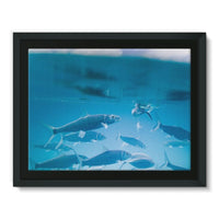 Fishes Under Water Framed Canvas 16X12 Wall Decor