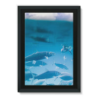 Fishes Under Water Framed Canvas 24X36 Wall Decor