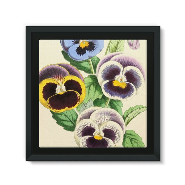 Floral Magazine 1869 Pansies Framed Canvas 12X12 Wall Decor