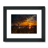 Flying Birds In The Sky Framed Fine Art Print 32X24 / Black Wall Decor