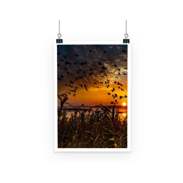 Flying Birds In The Sky Poster A3 Wall Decor