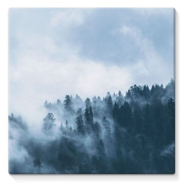Fog In The Sky Stretched Canvas 10X10 Wall Decor