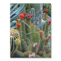 Fowering Cactus In A Garden Stretched Canvas 12X16 Wall Decor