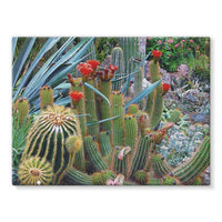 Fowering Cactus In A Garden Stretched Canvas 16X12 Wall Decor