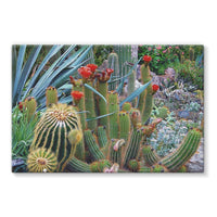 Fowering Cactus In A Garden Stretched Canvas 36X24 Wall Decor