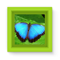Garden Butterfly Magnet Frame Green Homeware