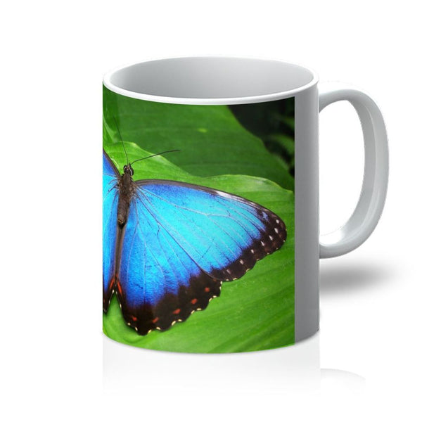 Garden Butterfly Mug 11Oz Homeware