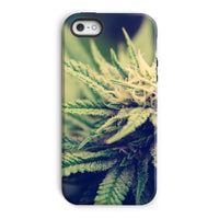 Green Cannabis Marijuana Phone Case Iphone 5/5S / Tough Gloss & Tablet Cases