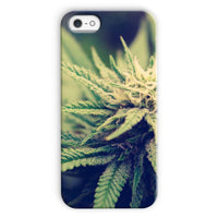 Green Cannabis Marijuana Phone Case Iphone 5C / Snap Gloss & Tablet Cases