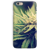 Green Cannabis Marijuana Phone Case Iphone 6 / Snap Gloss & Tablet Cases