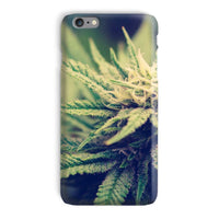 Green Cannabis Marijuana Phone Case Iphone 6S Plus / Snap Gloss & Tablet Cases