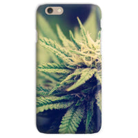Green Cannabis Marijuana Phone Case Iphone 6S / Snap Gloss & Tablet Cases