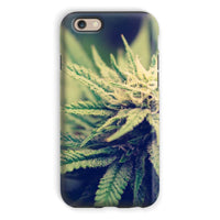 Green Cannabis Marijuana Phone Case Iphone 6S / Tough Gloss & Tablet Cases