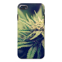 Green Cannabis Marijuana Phone Case Iphone 8 / Tough Gloss & Tablet Cases