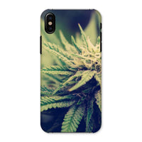 Green Cannabis Marijuana Phone Case Iphone X / Snap Gloss & Tablet Cases