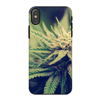 Green Cannabis Marijuana Phone Case Iphone X / Tough Gloss & Tablet Cases