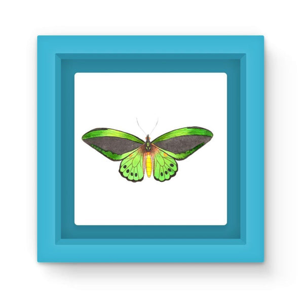 Green Grey Butterfly Magnet Frame Light Blue Homeware