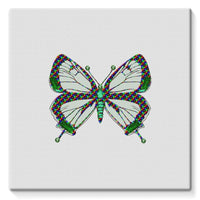 Green Rainbow Butterfly Stretched Canvas 14X14 Wall Decor