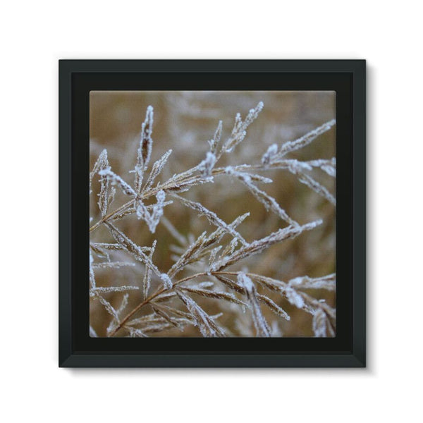 Ice Frozen On Plant Branches Framed Canvas 12X12 Wall Decor