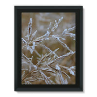 Ice Frozen On Plant Branches Framed Canvas 12X16 Wall Decor
