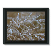 Ice Frozen On Plant Branches Framed Canvas 16X12 Wall Decor