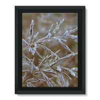 Ice Frozen On Plant Branches Framed Canvas 18X24 Wall Decor