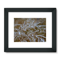 Ice Frozen On Plant Branches Framed Fine Art Print 32X24 / Black Wall Decor
