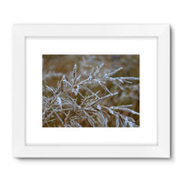 Ice Frozen On Plant Branches Framed Fine Art Print 32X24 / White Wall Decor