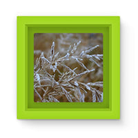 Ice Frozen On Plant Branches Magnet Frame Green Homeware