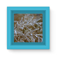 Ice Frozen On Plant Branches Magnet Frame Light Blue Homeware