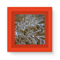 Ice Frozen On Plant Branches Magnet Frame Red Homeware