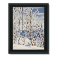 Ice Frozen On Plants Framed Canvas 12X16 Wall Decor