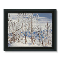 Ice Frozen On Plants Framed Canvas 16X12 Wall Decor