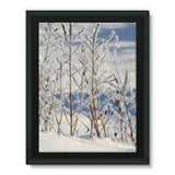 Ice Frozen On Plants Framed Canvas 18X24 Wall Decor