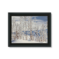 Ice Frozen On Plants Framed Canvas 24X18 Wall Decor