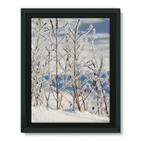 Ice Frozen On Plants Framed Canvas 24X32 Wall Decor