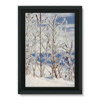 Ice Frozen On Plants Framed Canvas 24X36 Wall Decor