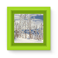 Ice Frozen On Plants Magnet Frame Green Homeware