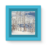 Ice Frozen On Plants Magnet Frame Light Blue Homeware