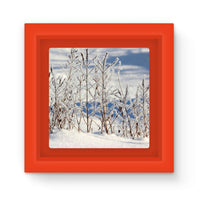 Ice Frozen On Plants Magnet Frame Red Homeware