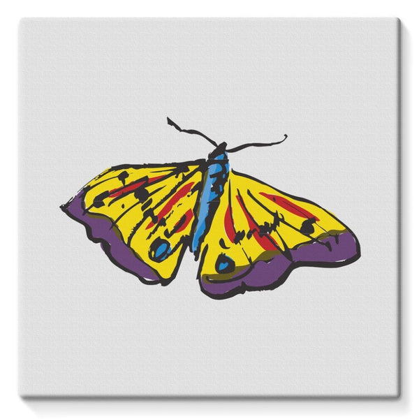 Passarella Butterfly Stretched Eco-Canvas 10X10 Wall Decor