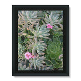 Plant With Pink Flowers Framed Canvas 12X16 Wall Decor