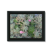 Plant With Pink Flowers Framed Canvas 24X18 Wall Decor