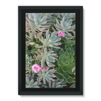 Plant With Pink Flowers Framed Canvas 24X36 Wall Decor